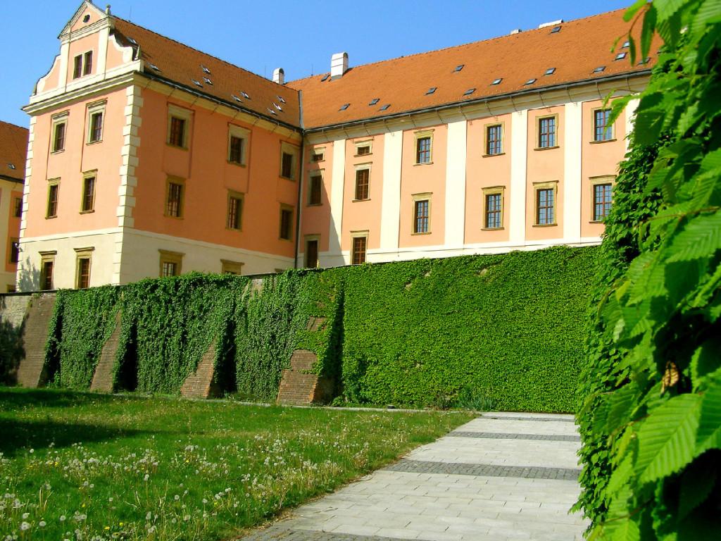 Konvikt, Olomouc